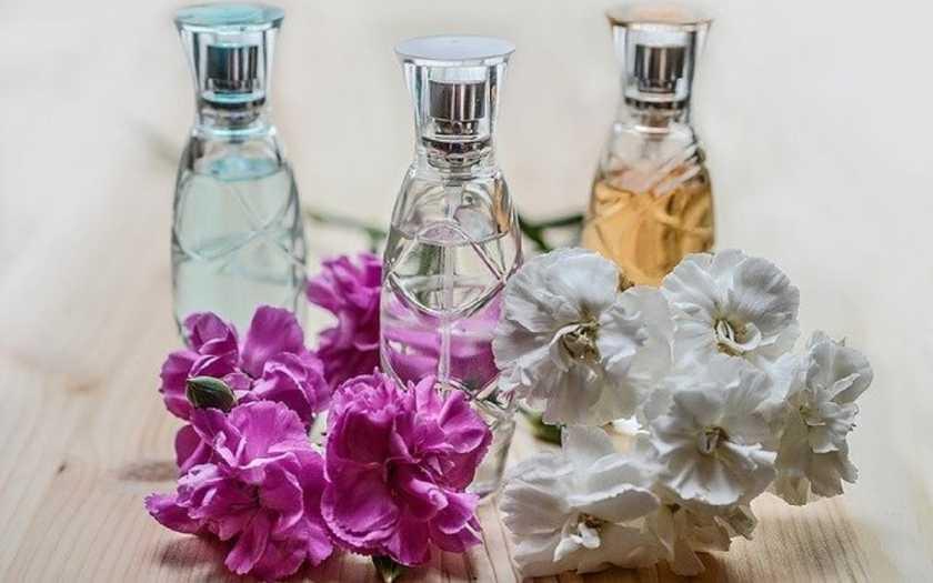 melhores perfumes importados para adolescentes