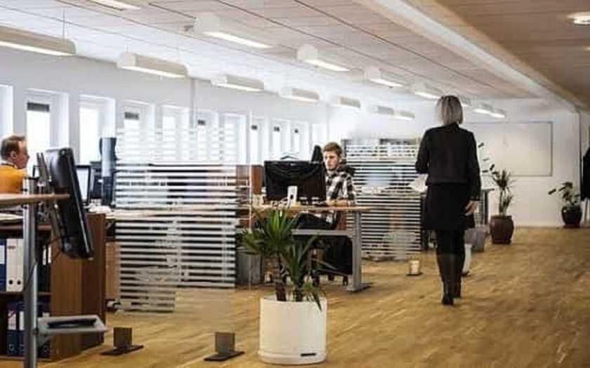 Qual a importância da diversidade dentro de uma empresa